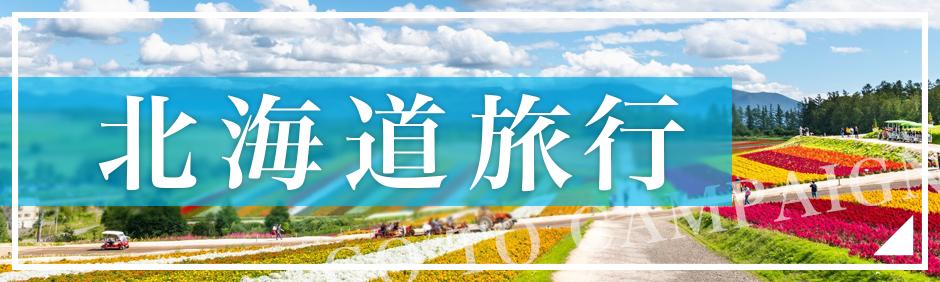Go To キャンペーン一人旅 北海道